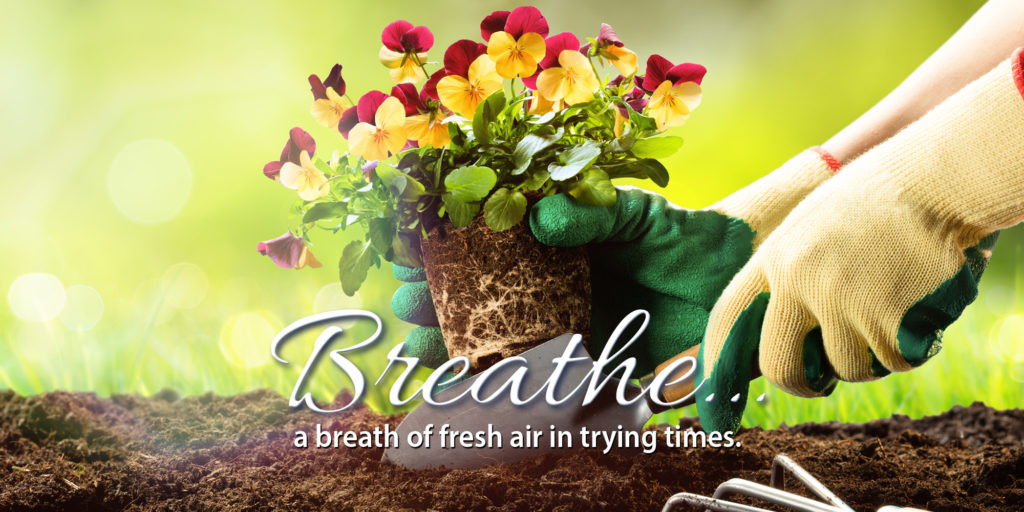Breathe a breath of fresh air